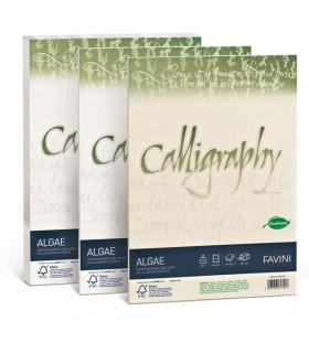 Cartoncino Algae Favini Calligraphy F.to A4 da 200gr conf. da 50 fogli color Avorio