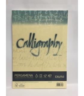 Cartoncino Pergamena Favini Calligraphy F.to A4 da 90gr conf. da 50 fogli color Perla