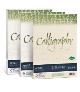 Cartoncino Algae Favini Calligraphy F.to A4 90gr conf. da 50 Fogli colore Avorio