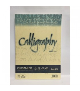 Cartoncino Pergamena Favini Calligraphy F.to A4 190gr conf. da 50 Fogli colore Crema