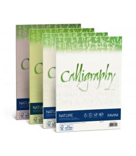 Cartoncino Nature Favini Calligraphy F.to A4 da 120gr conf. da 50 fogli color Oliva
