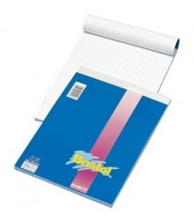 Blocco notes Blasetti Formato 21X29.7 rig. 5m conf. 10 pz.