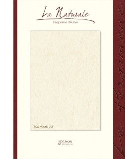Carta Neutra Avorio A3 160 gr.  conf. 12 fogli