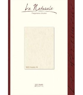 Carta Neutra Avorio A4 160 gr. conf. 12 fogli