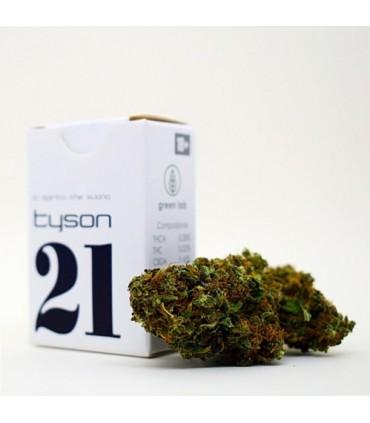 Infiorescenza di Canapa Sativa Green Lab 21 Tyson   scatolina 1 gr