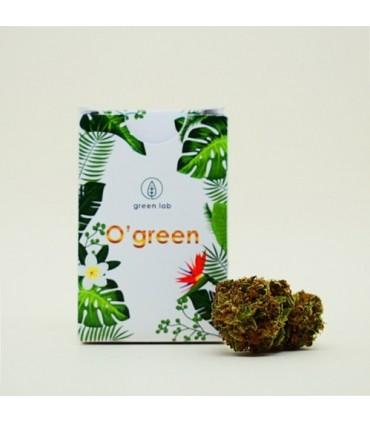 Infiorescenza di Canapa Sativa Green Lab O'green  scatolina 1 gr