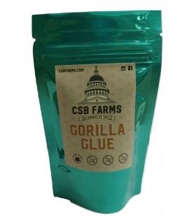 Infiorescenza di Canapa Gorilla bustina  1 g senza semi