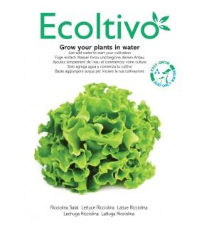 Vaso Idroponico senza Terra Ecoltivo Lattuga Ricciolina