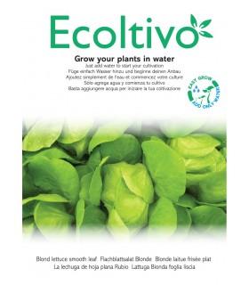 Vaso Idroponico senza Terra Ecoltivo Lattuga Bionda foglia liscia