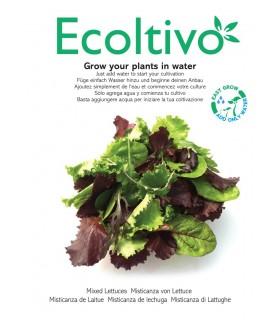 Vaso Idroponico senza Terra Ecoltivo Misticanza Lattughe  80g