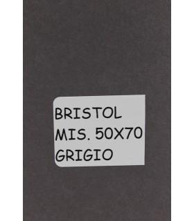 Bristol Favini misura 70X100 gr.200 grigio