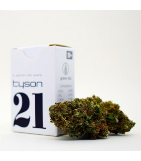 Infiorescenza Cannabis Sativa Green Lab 21 Tyson   scatolina 1 gr