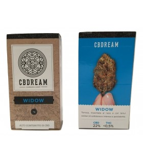 Infiorescenza di Cannabis Light CBDREAM Widow a scatolina da 1 gr