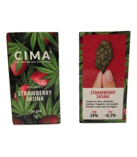 Infiorescenza di Cannabis Light Cima STrawberry  scatolina da 1 gr