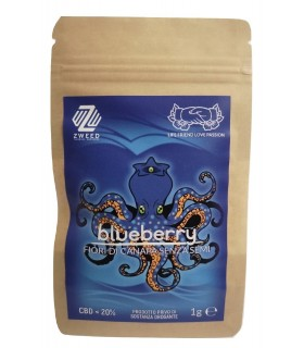Infiorescenza di Cannabis Light ZWEED BLUEBERRY bustina da 1gr