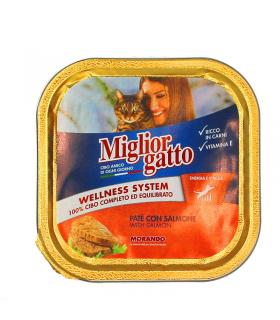 Miglior Gatto Patècon Salmone Vaschetta da 100 gr