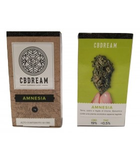 Infiorescenza di Cannabis Light Cb Dream Amnesia scatolina da 1 gr