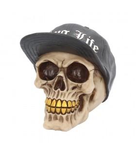Teschio con Cappellino in Resina confezionato in scatola