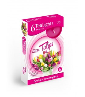 Candela Tea Lights Santo Candles Fragranza Tuliani  conf. 6 pz.