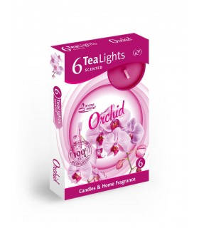 Candela Tea Lights Santo Candles Fragranza Orchidea conf. 6 pz.