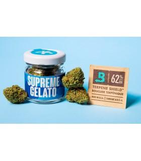 Infiorescenza di Cannabis Light TASTY KIWI CBD 20% Barattolo in Vetro da 1gr.