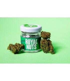 Infiorescenza di Cannabis Light ROYAL NUTS CBD 19% Barattolo in Vetro da 1gr.