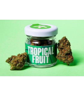 Infiorescenza di Cannabis Light BREAK TROPICAL FRUIT CBD 20% THC 0.5% Barattolo in Vetro da 2gr.