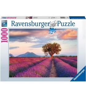Puzzle Ravensburger 70x50 cm. 1000 pz. Campi di Lavanda