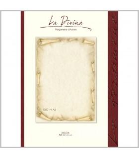 Carta Pergamena Fiorentino A3 160 gr. colore avorio conf.12 fogli